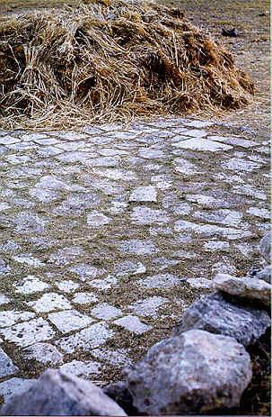 A threshing floor near bethlehem for Threshing floor
